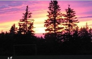 beautiful sunset seen from the ball field on the property