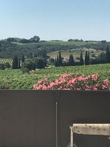 Photo for Avignon charming studio 2p in the middle of the vineyards of Chateauneuf du pape