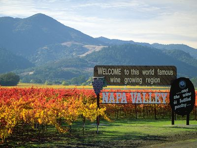 Serene Vineyard, Hill and River View Napa Valley Home