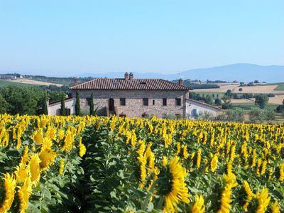 Photo for Apartment Mercurio 2+2 in a farmhouse with pool, 7 km from Lake Trasimeno