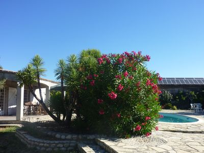 Photo for 2BR Mas Vacation Rental in Aniane, Occitanie