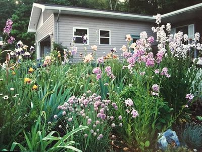 Photo for Peaceful Country Setting In Leelanau County between Traverse City and Glen Arbor