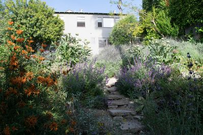 Beautiful terraced backyard with views of Hollywood, Griffith Park and West LA