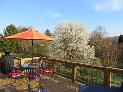 Stunning views from spacious back deck with lots of bird-watching!
