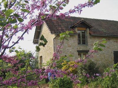 Photo for charming farm house in the heart of black Périgord, 3km from Sarlat