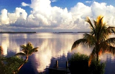 Typical quiet afternoon in the Keys.
