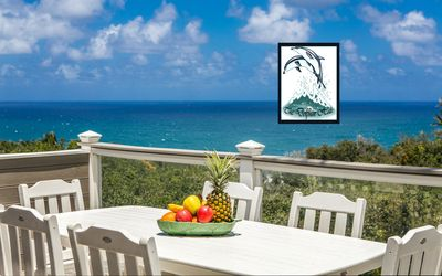 Deluxe Ocean-View Bluff Home full of ALOHA for up to 10 - AC!