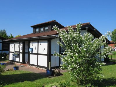 Holiday house 101 Scout 48sqm for max  4 people with pets - Holiday home  Scout 48 in the holiday village Altes - Hollern