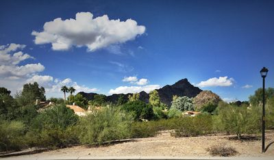 Photo for Immerse yourself in an authentic experience and connect with AZ desert lifestyle