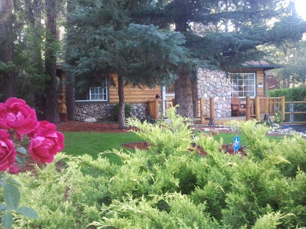 rentals with mountain lake pin cabins a hot and dog lodge owner view tub fireplace views pet bear big in cabin friendly you by rental love so will your