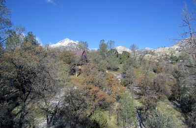 Fresh air, 1.3 acres with varied trees, boulders, a fire pit, tire swing, tree fort, and many species of birds.