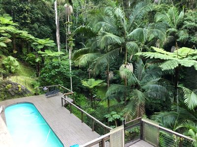 Photo for Rainforest Retreat Currumbin Valley With Pool