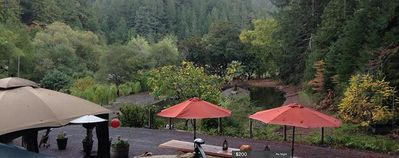 Photo for Full Apartment Sleeps 2 With Private Jacuzzi Under Redwoods In Sonoma  Wine Area