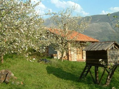 Photo for Beautiful house between the sea and the Picos de Europa. Built of stone and wood