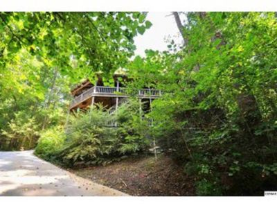 "Photo for Townsend ""Tree House"": Nestled Among Trees, Pet Friendly, Private, Spacious"
