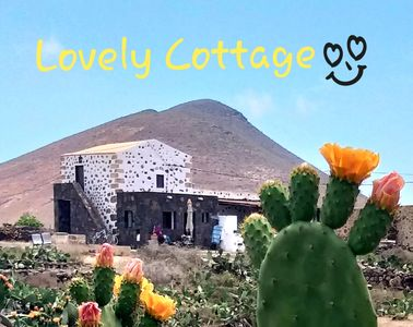 Photo for Lovely Cottage House