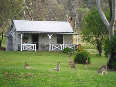 Photo for Kurrajong Vineyard Cottages