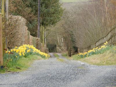 Private lane to farmhouse and Duck Cottage