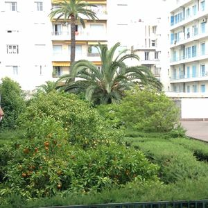 Photo for Nice nearby Centre, Quiet, parking, WIFI, Beach, Promenade des Anglais