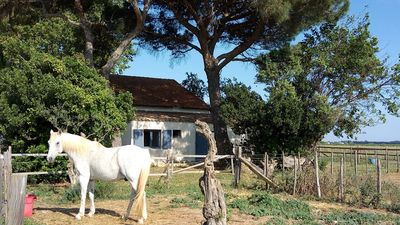 Photo for 1BR Cottage Vacation Rental in Lunel, Occitanie