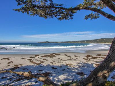 Photo for 3BR House Vacation Rental in Carmel-By-The-Sea, California