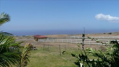 Photo for Oceanview One Bedroom * Full Kitchen * Lanai *  Bbq * $169