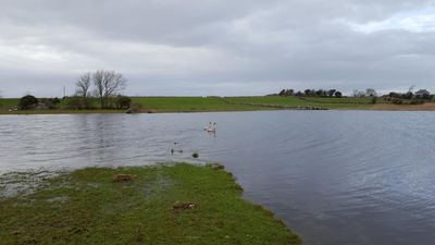 Photo for Lakeside tranquility near Galway