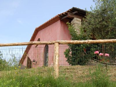 Photo for Bere Regis: Valdonica - farmhouse among olive groves and vineyards