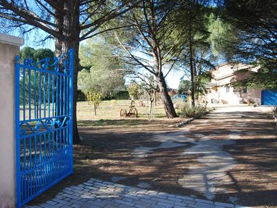 Photo for Provencal villa between vineyards and pine forest