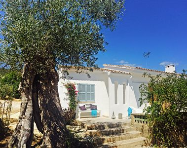 Photo for Finca in the olive grove with mountain views and pool, central location