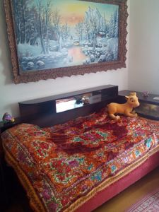 Photo for FARMHOUSE MOUNTAIN SANCTUARY,ROSIA MONTANA PRECIOUS HOLIDAY WITH ANIMALS