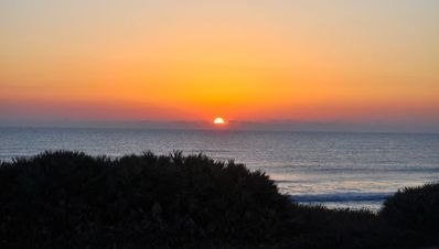 Photo for Updated Ormond-by-the-Sea Beachfront Escape- with Garage & Wi-Fi