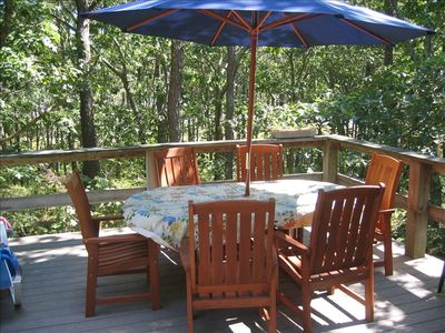 Teak dining table with umbrella