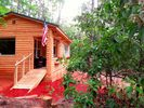 1BR Cabin Vacation Rental in Cleveland, South Carolina