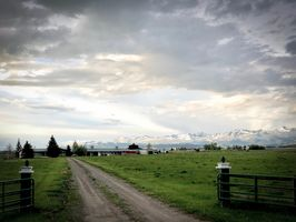 Photo for 1BR Guest House/pension Vacation Rental in Livingston, Montana