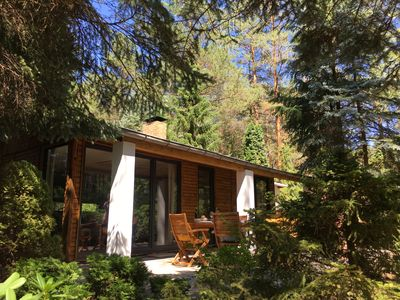 Photo for BUNGALOW IN THE FOREST on a natural plot