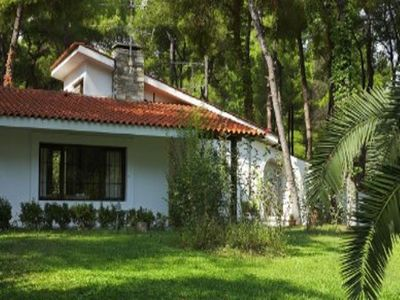 Photo for Lovely villa surrounded by pine trees in Sani