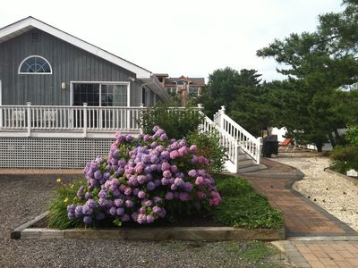 Photo for 200 feet to the ocean on a private lane sits this wonderful 4 bedroom ranch
