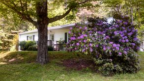 Photo for 3BR House Vacation Rental in Webster Springs, West Virginia