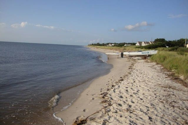 The Winter's Over Cottage Just Steps away from Delaware Bay!