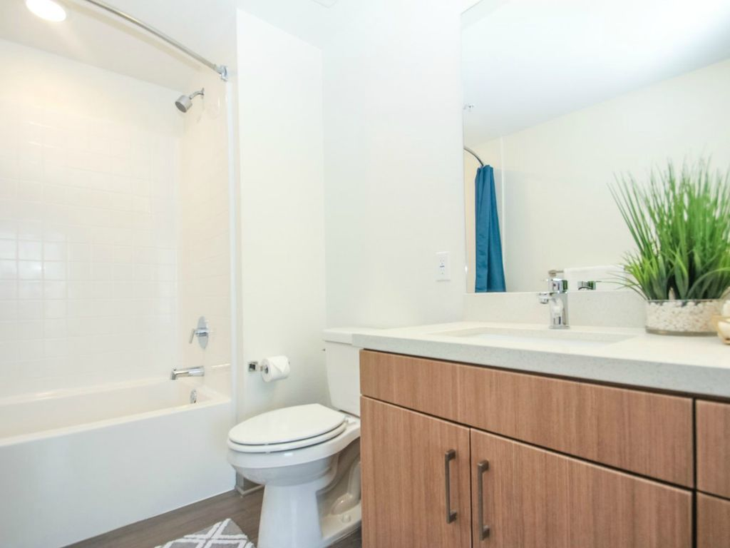 luxury two bedroom furnished apartment for rent near americana