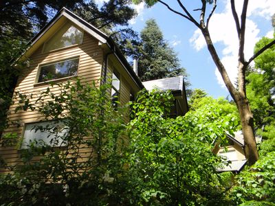 Photo for Treetops Guesthouse Cottage @ Lochiel Accommodation