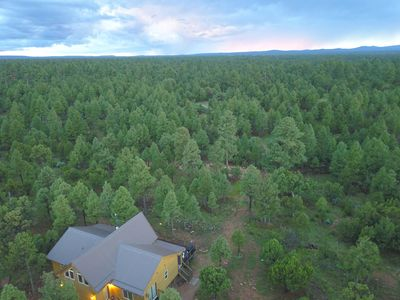 Pine Haven -  5 Acre Family Friendly Cabin - Borders Coconino National Forest