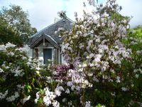 Beautiful well organized cottage with everything you need and very well located near Corran Ferry