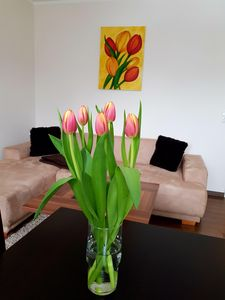 Photo for Apartment on the Elbe ferry - Apartment for 2 - 3 people