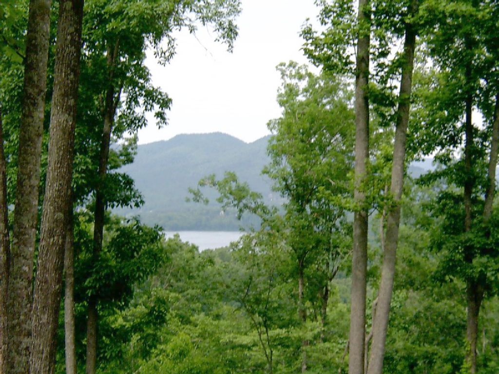 Mossy Oaks Lodge 4 Br 3 Ba With Great Views Hiawassee
