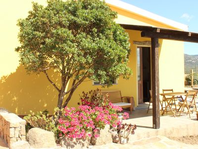 Photo for Agriturismo Campesi, holiday home near the sea, overlooking the vineyards.