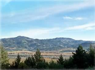 Panoramic View of the Alexander Valley from the Lodge