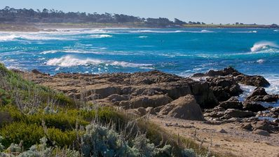 Photo for Monterey Peninsula Cottage--walk to tide pools and beaches