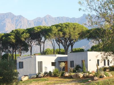 Photo for In the Calvais vineyard, modern villa, new, for 8 people